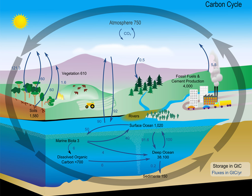 carbon-cycle-diagram-nasa